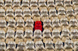 étude diversité dans l'assurance Argus de l'Assurance & XL Catlin